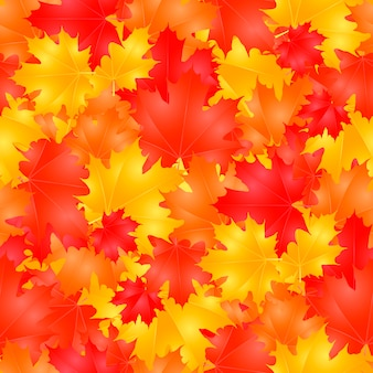 Seamless pattern with colorful autumn maple leaves