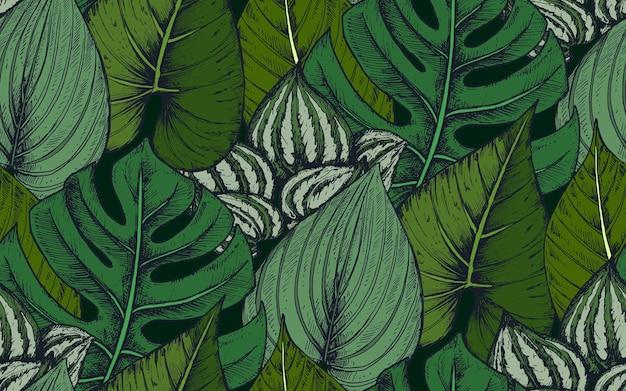 手描きの熱帯のヤシの葉、ジャングルの植物の組成物とのシームレスなパターン。
