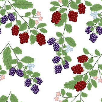 Seamless pattern with currant berry plant and flower