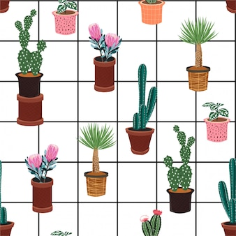 Seamless pattern with different cactus in many kind of pots on window