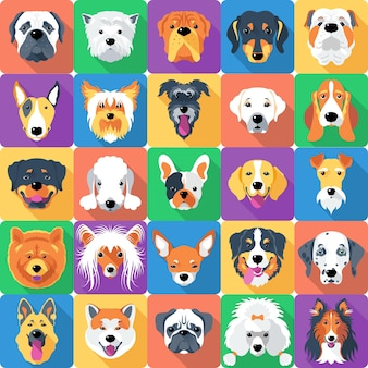 Seamless pattern with dogs flat design