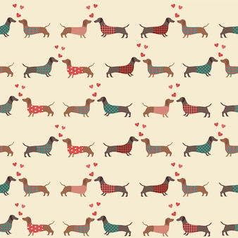 Seamless pattern with dressed dachshunds , hearts. love.
