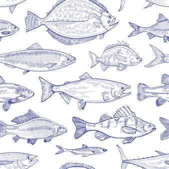 白い背景の上の輪郭線で描かれた魚の手描きとのシームレスなパターン。海、海、淡水池に生息する海洋動物や水生生物の背景。モノクロイラスト。
