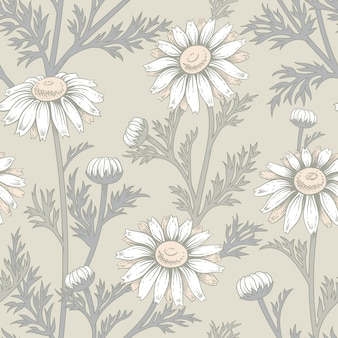 Seamless pattern with flowers of chamomile.