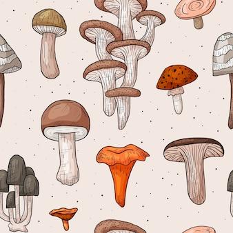 Бесшовный фон с лесными съедобными и ядовитыми грибами. осенние модные наклейки в стиле контура.