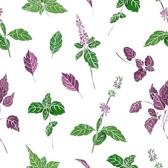 Бесшовный фон с зелеными и фиолетовыми листьями базилика и соцветиями рисованной