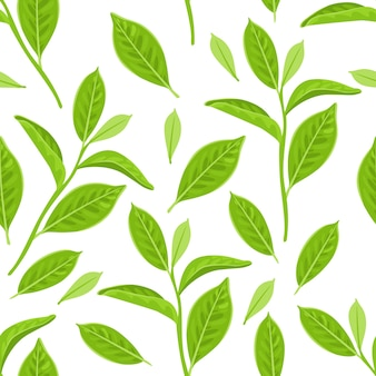 Seamless pattern with green tea leaves on white background.