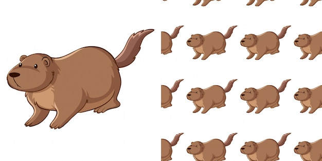 Seamless pattern with guinea pig