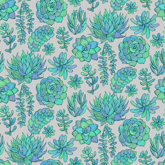 Seamless pattern with hand drawn color succulent plants on grey background