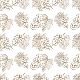 Seamless pattern with hand drawn grape.  element for poster, card, banner, flyer.  illustration