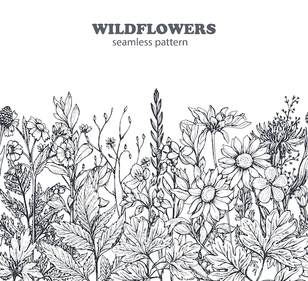 Seamless pattern with hand drawn herbs and flowers on white background