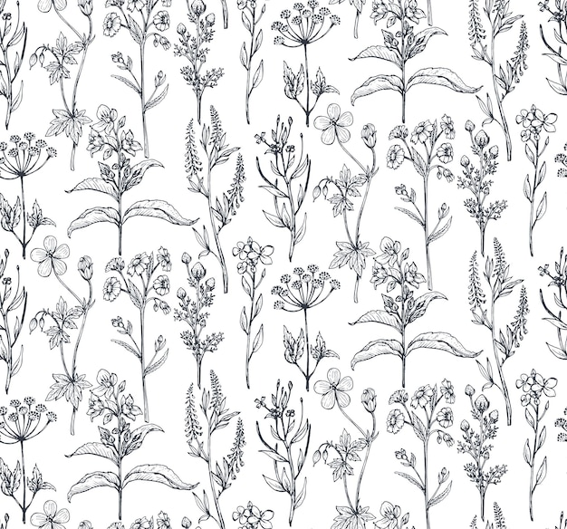 Seamless pattern with hand drawn herbs and flowers