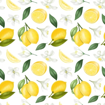 Seamless pattern with hand drawn lemons and lemon flowers on a white