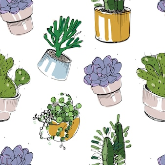 Seamless pattern with hand drawn succulents and cactus in pots. colorful illustration on white background.