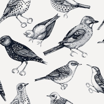 Seamless pattern with handsketched detailed birds illustrations in engraved style
