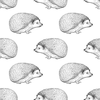 Seamless pattern with hedgehog.