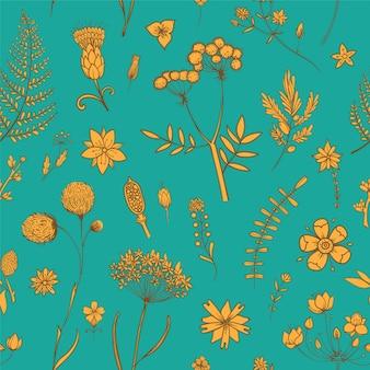 Бесшовный фон с цветами гербария