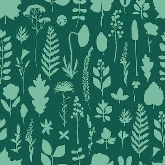 シンプルなスタイルの植物標本の葉と花とのシームレスなパターン。