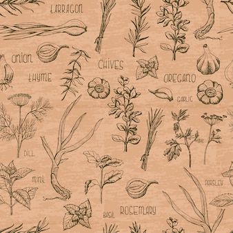 Seamless pattern with herbs and spices on a beige color