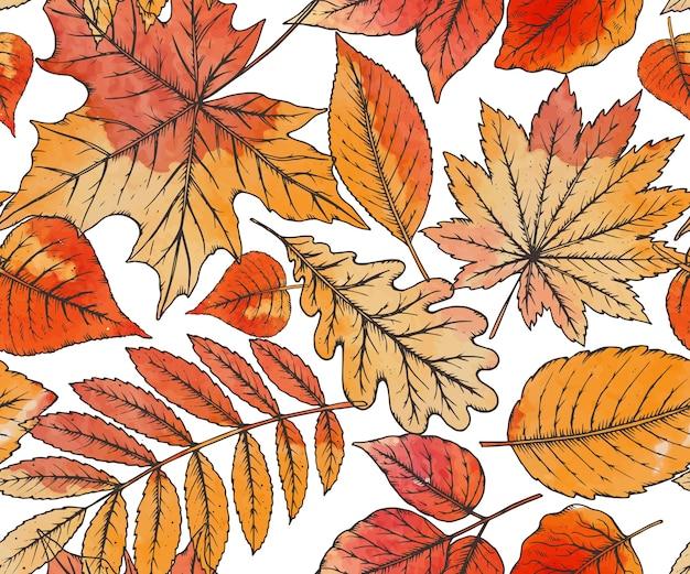 水彩画の質感を持つ非常に詳細な手描きの葉とシームレスなパターン。秋の森
