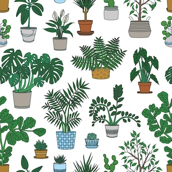 Seamless pattern with houseplants growing in pots on white