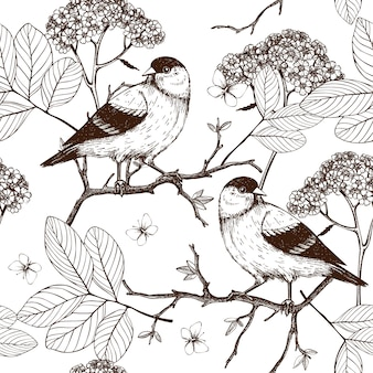 Seamless  pattern with ink hand drawn birds on blooming  tree twigs. vintage sketch background  on white