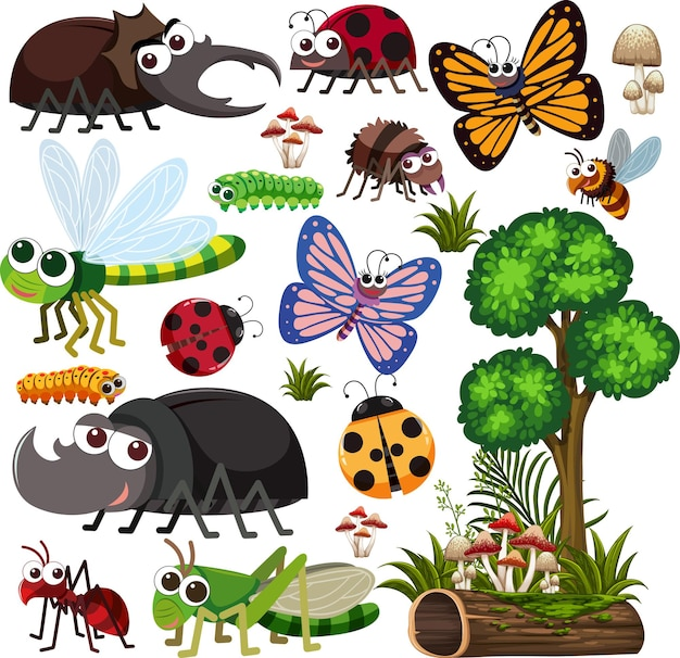 Seamless pattern with many different beetles character on white background