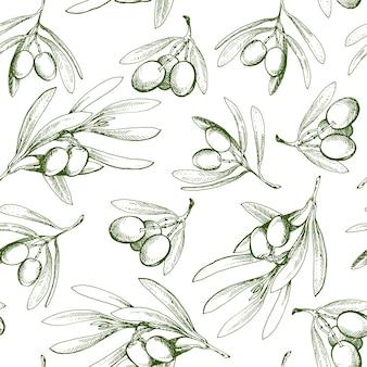 Бесшовный фон с оливковой ветвью. нарисовано от руки