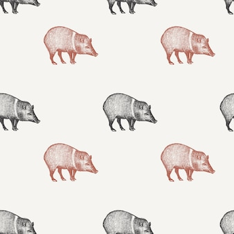 Seamless pattern with peccary.