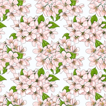 Seamless pattern with pink spring apple flowers.