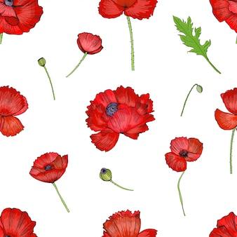 赤いケシの花とのシームレスなパターン。カラフルな明るい手描きの背景。