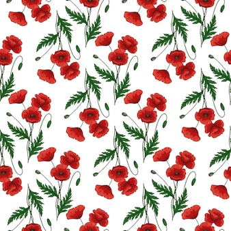 빨간 양 귀 비 꽃과 원활한 패턴 양귀비속 녹색 줄기와 잎 화이트에 손으로 그린 벡터