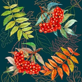 ナナカマドの果実と葉のシームレスなパターン。水彩