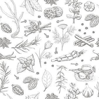 Seamless pattern with spices and herbs on a white background