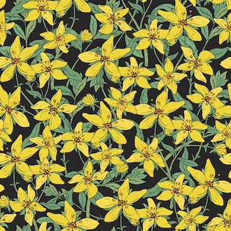 Seamless pattern with st. john s wort medical botanical blossom plant. hand drawn  colorful texture in black background.
