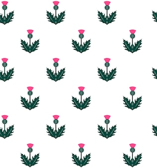 Seamless pattern with thistle. symbol of scotland.