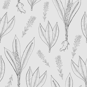 Бесшовный фон с куркумой. лечебно-ботаническое растение, корень, листья. рисованной черно-белые текстуры.