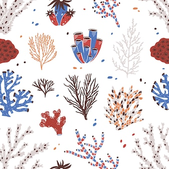 Seamless pattern with various corals and seaweed or algae on white.