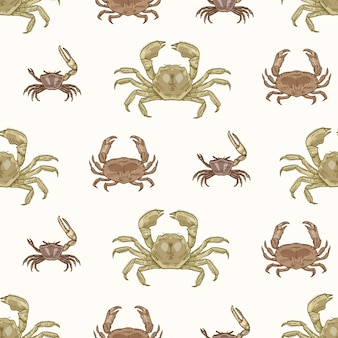 흰색 바탕에 다양한 종류의 게와 원활한 패턴입니다. 수생 동물과 자연 배경입니다. 포장지, 섬유 인쇄를 위한 빈티지 스타일의 우아한 사실적인 벡터 삽화.