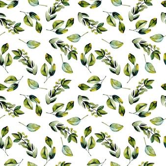 수채화 녹색 월계수 가지와 완벽 한 패턴