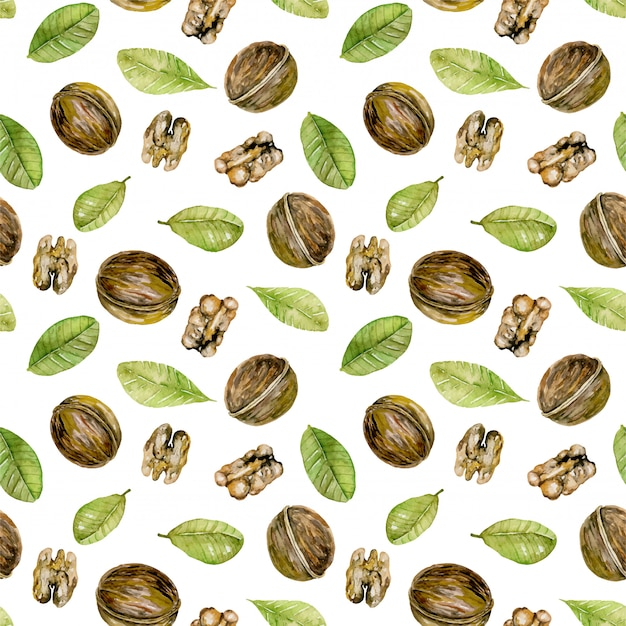 Seamless pattern with  watercolor walnuts elements