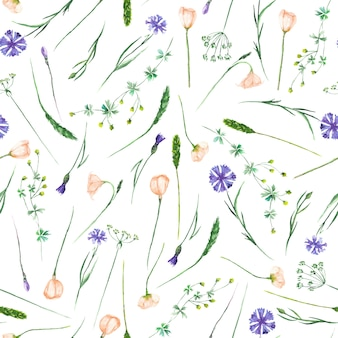 Seamless pattern with watercolor wildflowers and cornflowers
