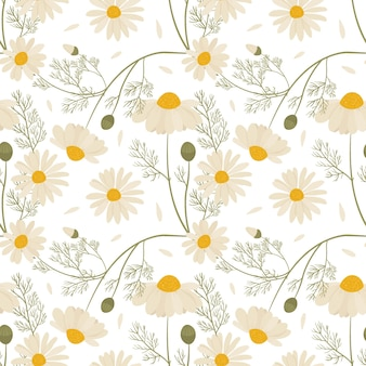 Seamless pattern with wild chamomile flowers