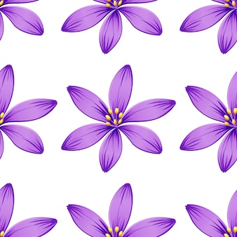 Seamless purple flowers isolated on white
