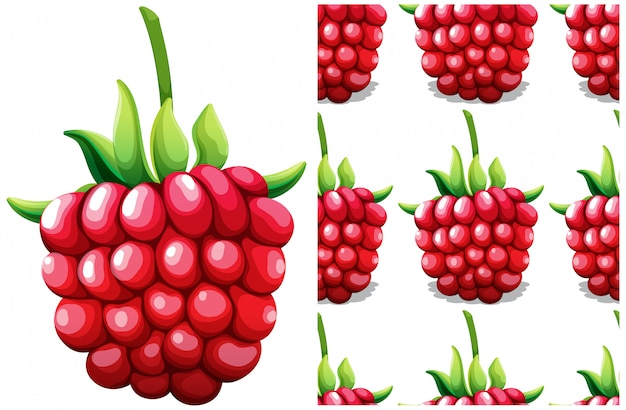 Seamless rasberry pattern isolated on white