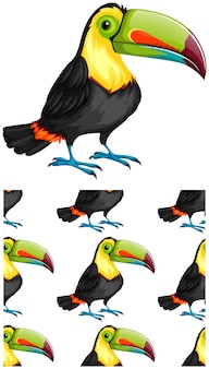 Seamless toucan pattern isolated on white