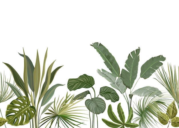 Seamless tropical floral print with exotic green jungle leaves on white background. rainforest plants wallpaper template, nature textile ornament, philodendron monstera flowers vector illustration