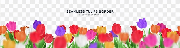 Seamless tulips decorative frame border
