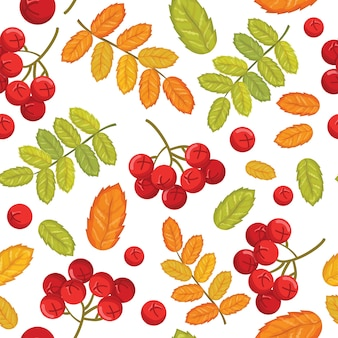 Seamless vector pattern with rowan.