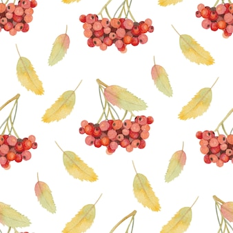 Seamless watercolor autumn pattern with rowan and leaves